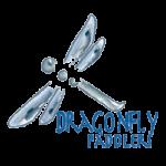 Dragon Fly Canoe & Kayak Rental